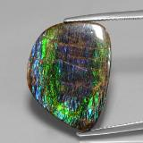 thumb image of 15.8ct Fancy Cabochon Multicolor Ammolite (ID: 377445)
